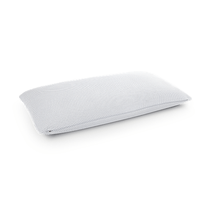 BODYGUARD<sup>®</sup> Pillow Plus